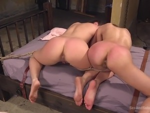 The Anal Asset